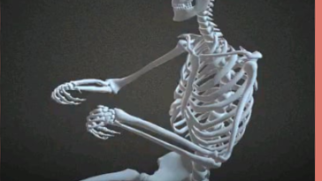 Human Skeleton under Different Situations